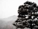 Winter080123