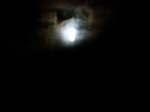 Nightshift080708