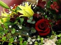 Flower090220