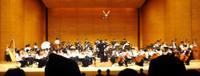Orchestra100110