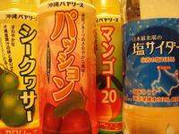 Okinawa100731