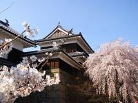 Ueda_castle110416