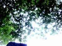 Sky110613