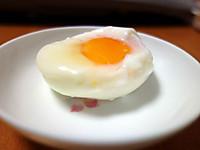 Egg130329
