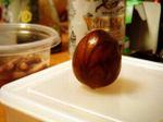 Avocado061119b_1