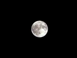 Moon190914