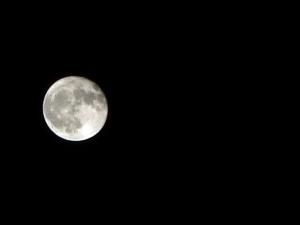 Moon190922