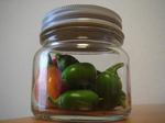 pickles050925a