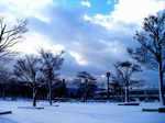 snow060128