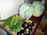 vegetable050824