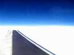 wing060306