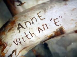Anne201018