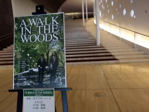 Awalkinthewoods210321b