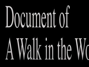 Documentogawalkinthewoods