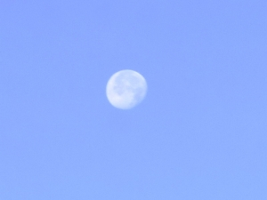 Moon201202