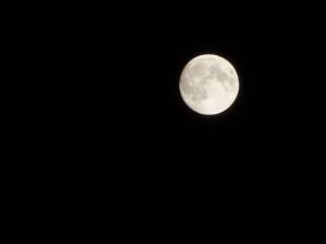 Moon210525