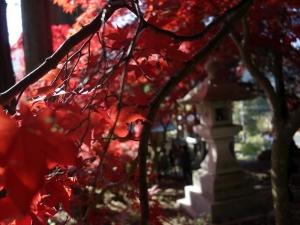 Seisuiji201113